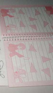 cahier spirale vintage notebook